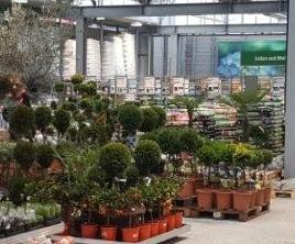 Przebudowa ogrodu 2